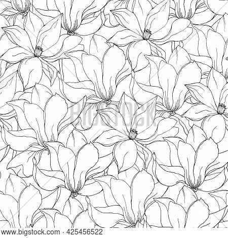 Black And White Floral Background Of Magnolia And Lily Flowers, Hand-drawn Vector Seamless Pattern.