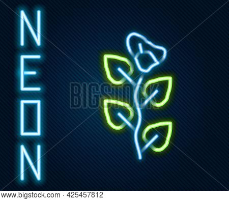 Glowing Neon Line Ivy Branch Icon Isolated On Black Background. Branch With Leaves. Colorful Outline