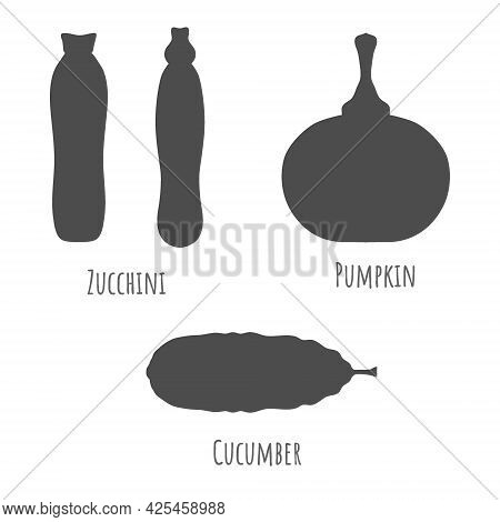 Zucchini, Pumpkin And Cucumber Isolated On White