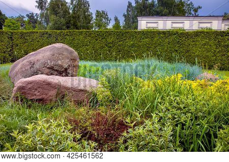 Rockery With 2 Big Natural Stones Among Green Plants, Park Landscaping With Thuja Hedges And Plantin