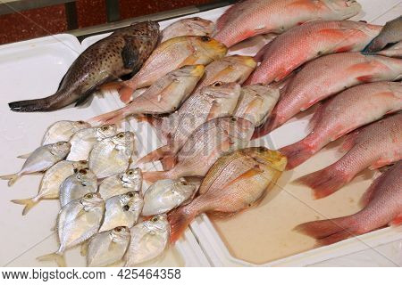 Billingsgate Fish Market In London, Uk. Red Snapper And Red Sea Bream.