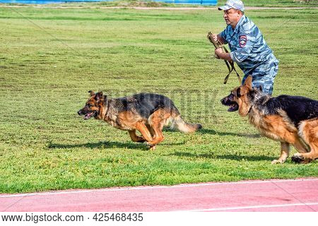 Abakan, Russia - August 21, 2018: A Police Officer Training A Sniff Dog For Finding Drugs, Weapons,