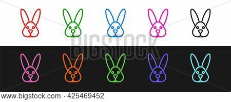 Set Line Animal Cruelty Free With Rabbit Icon Isolated Set Line Background. Vector