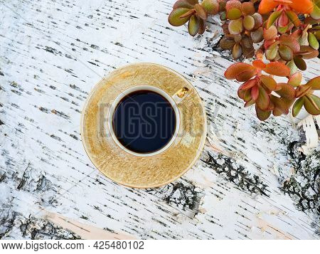 Cup Of Coffee And Red Money Tree Crassula Ovata On Birch Bark Wooden Background, Summer Flatlay. Top
