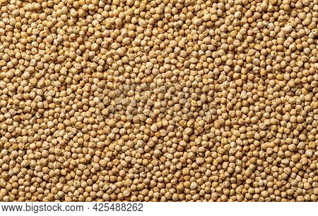 Dry Chickpea Beans Background. Texture Of Uncooked Chickpeas. Raw Legume Ingredient For Hummus And V