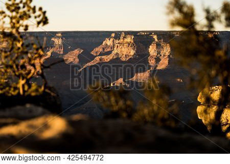 Peeking Through The Pine Trees To See The Grand Canyon From The South Rim