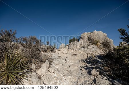 Part Of The Rocky Trail Leaing Up To Guadalupe Peak In West Texas
