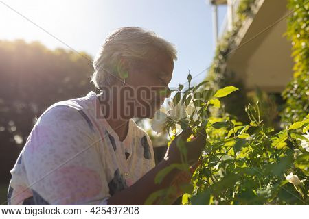 Senior african american woman smelling flowers in sunny garden. retreat, retirement and happy senior lifestyle concept.