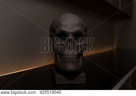 Black Skull. Place For Text. Bust Of The Skull. Beautiful Home Decor For The Interior. Copy Space. M