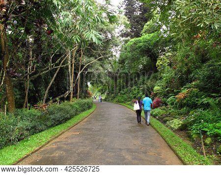 Kandy, Sri Lanka - 07 Jan 2011: Royal Botanical Gardens, Kandy, Sri Lanka