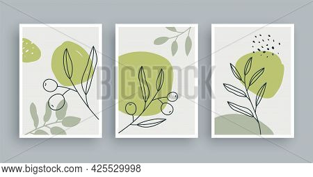 Olive Branch Botanical Wall Art Painting Background. Foliage Art And Hand Drawn Line With Abstract S
