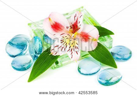 Clarity Spa Concept With Flower