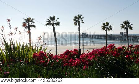 Pacific Ocean Beach, Palm Trees, Flowers And Pier. Sunny Day, Tropical Waterfront Resort. Oceanside