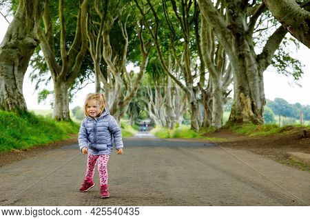 Cute Toddler Girl Walking On A Rainy Day In The Beginning Of The Dark Hedges. Northern Ireland. Happ