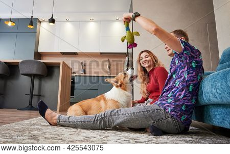 Side View Of Young Man Holding Toy And Playing With Cute Corgi While Spending Time With Wife At Home