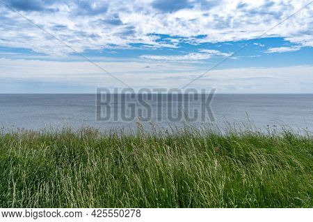A Peaceful Background Of Meadow With Tall Grasses Looking Out Onto The Ocean With Blue Sky And White