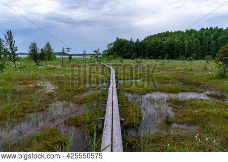 A Moor And Swampy Landscape On The Shores Of A Lake With Vegeetation And A Wooden Boardwalk Path Thr