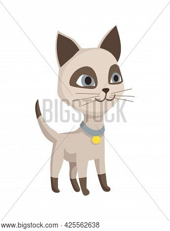 Cartoon Cat Character. Siamese Colorpoint Pet. Adorable Domestic Cat Playing. Funny Happy And Playfu