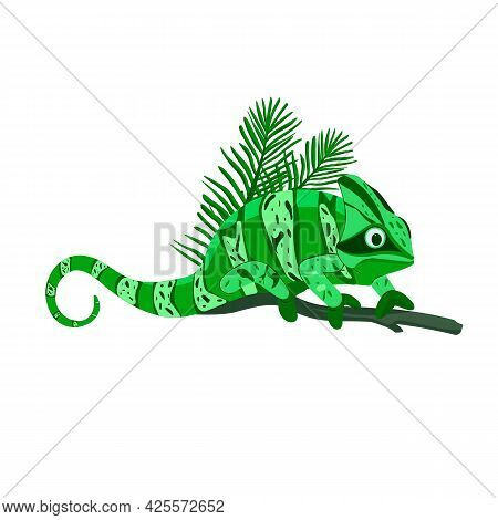 A Cute Funny Green Chameleon Sits On A Branch. Palm Branch. Isolated On White Background Cardboard S