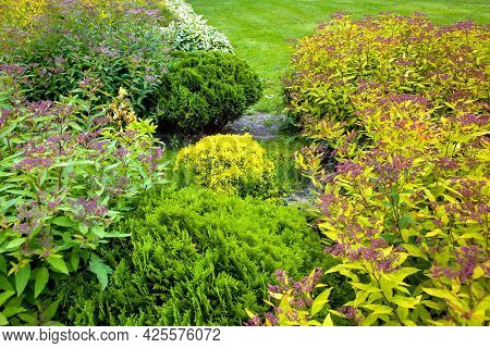 Flower Bed With Bushes And Flowers Landscaping Garden With Plants For Backyard Decor In Summer Seaso