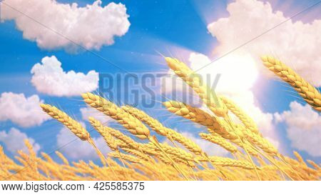 Ripe Rye Spikelets On Field At Fine Summer Day , Nature 3d Illustration