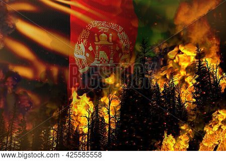 Big Forest Fire Fight Concept, Natural Disaster - Flaming Fire In The Trees On Afghanistan Flag Back