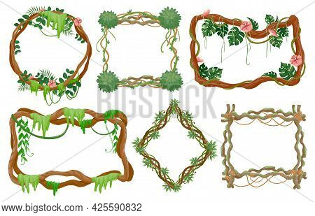 Jungle Liana Frames. Cartoon Rainforest Branches With Moss, Vines With Tropical Leaves And Exotic Fl