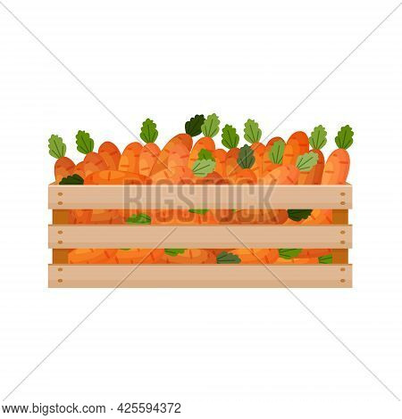 A Bright Autumn Illustration With The Image Of A Wooden Box With Carrots. The Harvested Crop Of Fres