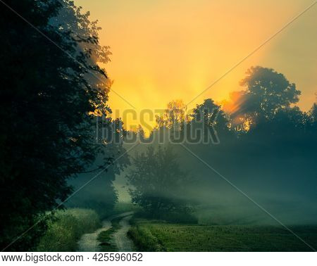 A Beautiful Scenery With Sun Rays Shining Through Trees During A Misty Sunrise. Summertime Scenery O