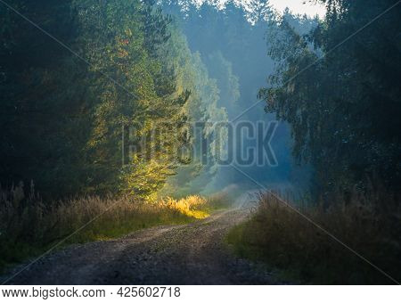 A Summer Morning Landscape With A Gravel Road In The Rural Area. Countryside Dirt Road. Summertime S