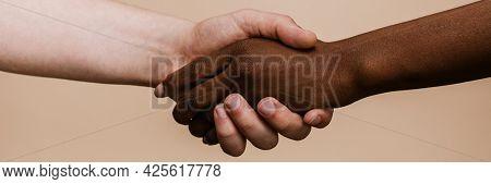 White hand shaking the black hand