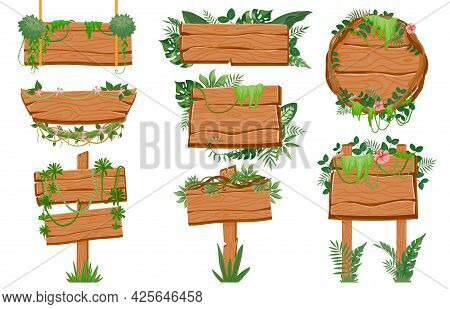 Jungle Wooden Signboards. Wood Board With Tropic Leaves, Moss And Liana Plants For Game Ui. Cartoon