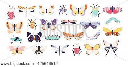 Decorative Insects. Doodle Beetles, Butterflies, Dragonflies, Bee, Caterpillar And Grasshopper. Vint