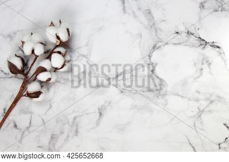Top View Of Cotton Sprigs On A Marble Background