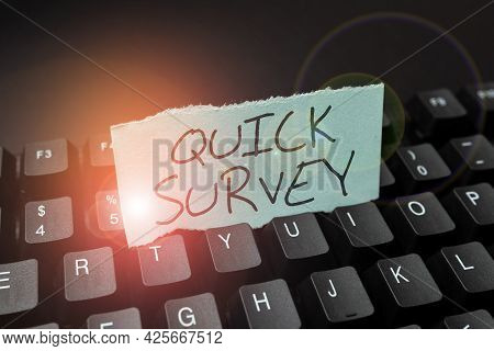Conceptual Display Quick Survey. Word Written On Conduct Fast Check On Condition Value Situation Of
