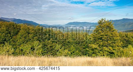Beautiful Morning Landscape In Mountain. Forest On The Hills. Stunning Autumn Scenery Of Carpathians