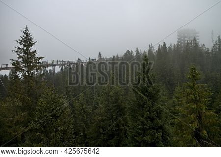 Bachledova Valley, Wooden Walkway Crown Of Trees In Fogy Weather.