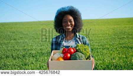 Multiracial Female Gardener Smells And Showing To The Camera Fresh Tomatoes At The Green Plantation.
