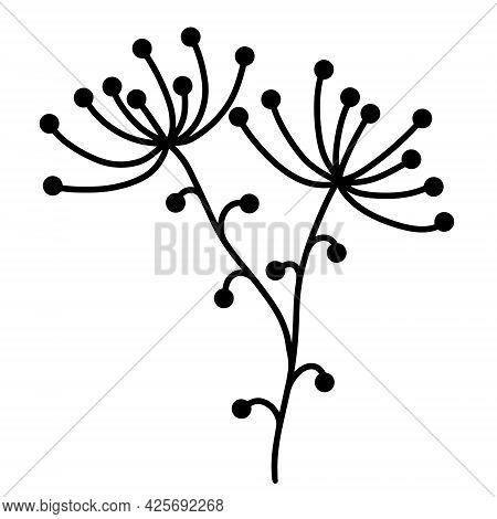 Vector Icon Sprig With Leaves And Berries. Hand-drawn Doodle. Botanical Element Isolated On White Ba
