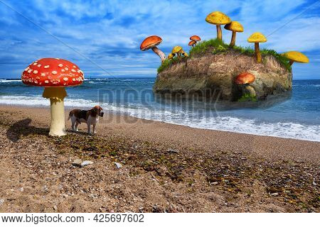 An Uninhabited Fabulous Island In The Ocean Covered With Grass And Giant Mushrooms Growing On It. A