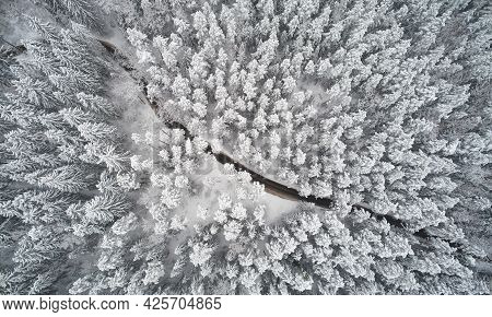 Winter Path In Forest Above Top Drone View. Cold Weather Theme
