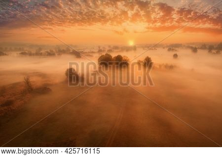 Early Misty Dawn In Autumn In Yellow Tones On A Meadow With Trees. Fog Swirls Over The Meadow - An A