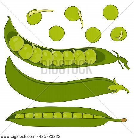 A Set Of Pods And Peas. Isolated Vector Illustration On White Background