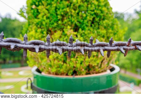 Black Massive Chain With Spikes On A Green Wood Background