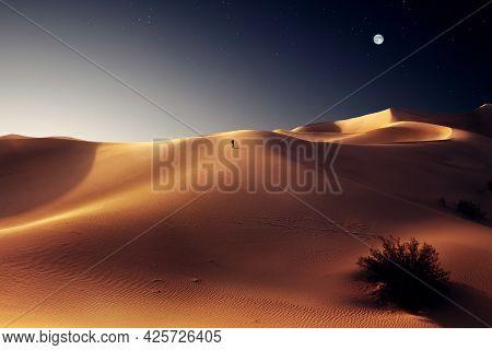 View Of Nice Sands Dunes At Sands Dunes National Park, California