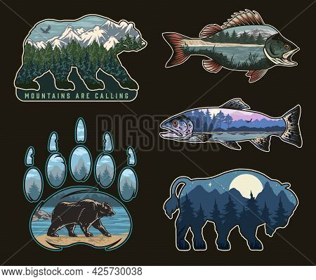 National Park Colorful Vintage Labels With Beautiful Nature Landscapes Inside Bear Grizzly Claw Biso