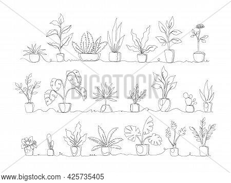 One Line. Home Plants. Continuous Monoline Pots With Tropical Greenery And Exotic Decorative Palms.