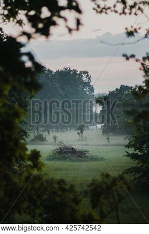 Beautiful Landscape With A View Through The Branches Of Trees To The Meadow Covered With Fog. In The