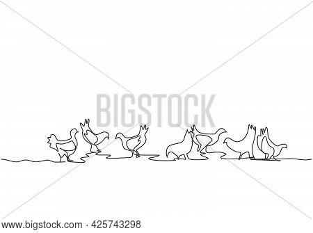 Single Continuous Line Drawing Of Several Chickens Were Playing In The Fields While Looking For Food