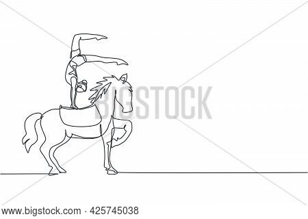 Continuous One Line Drawing A Female Acrobat Performs On A Circus Horse While Performing A Hand Stan